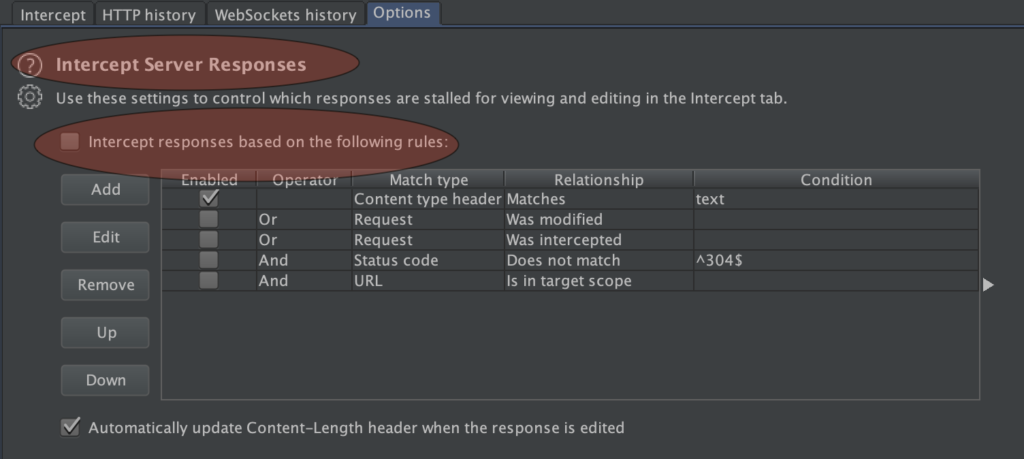 Intercept Server Responses Feature on Burpsuite